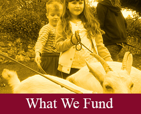 WHAT-WE-FUND